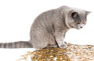 Finanční pojmy, které byste měli znát - 2. díl